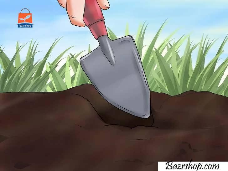 برای هر گیاه، سوراخی داخل زمین حفر کنید