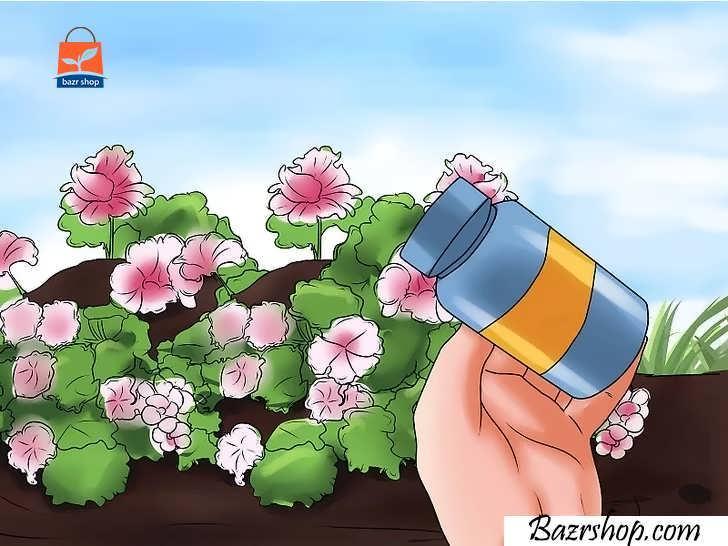 گیاه خود را با کودهای مایعی مانند ۲۰-۲۰-۲۰ کوددهی کنید