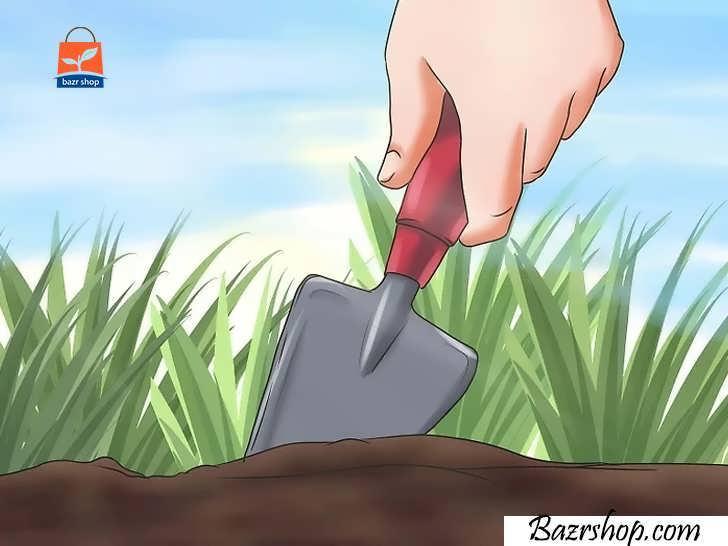 بستر باغ را برای کاشت آماده کنید