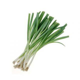 بذر پیازچه همیشه سبز نبوکا