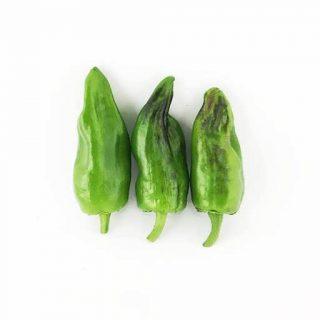 بذر فلفل دلمه ای سبزایتالیایی