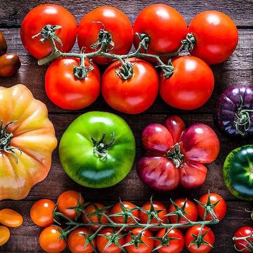 گوجه فرنگی میکس