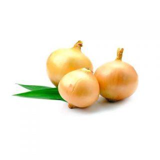 بذر پیاز زرد شیرین