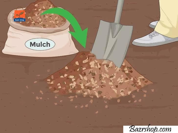 خاک مناسب انتخاب کنید