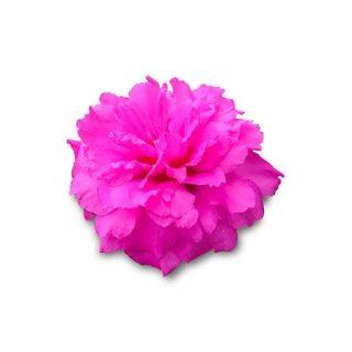 بذر گل ناز آفتابی ارغوانی