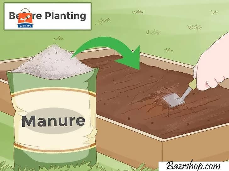 بستر کاشت بذر را آماده کنید