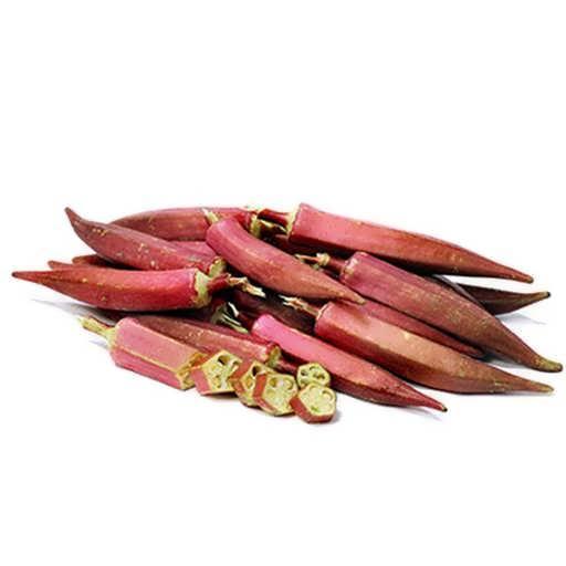بذر بامیه قرمز بورگندی