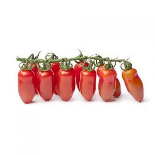 بذر گوجه فرنگی سان مارزانو
