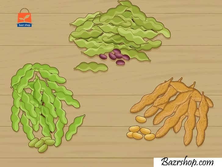 نوع بذر مناسب را انتخاب کنید