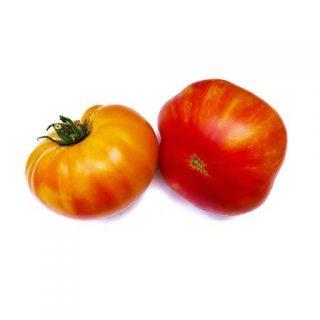 بذر گوجه فرنگی رنگین کمان