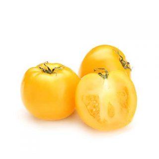 بذر گوجه فرنگی جشن طلایی