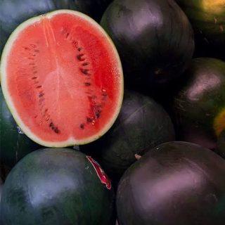 بذر هندوانه الماس سیاه