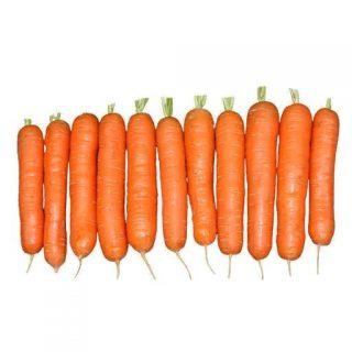 بذر هویج تیپ تاپ نانت