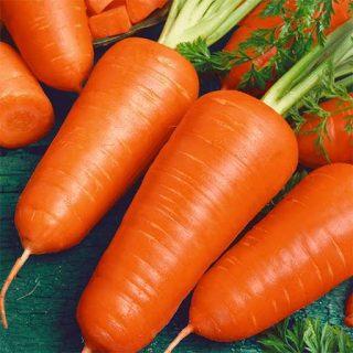 بذر هویج پودر قرمز