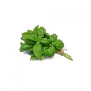 بذر ریحان سبز ایتالیایی