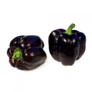بذر فلفل دلمه ای سیاه