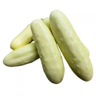 بذر خیار سفید معطر