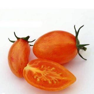 بذر گوجه زیتونی بلاش