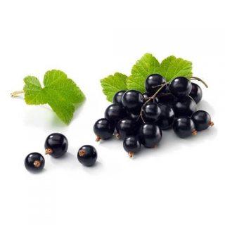 انگور فرنگی سیاه (بلک کارنت)