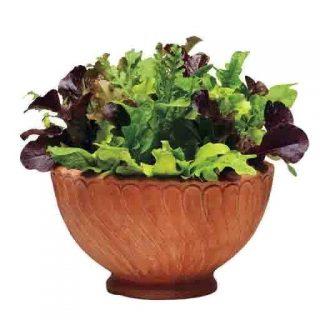 سبزیجات سالاد میکس