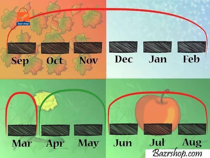 بذرهای خود را در طول بهار چندین بار بکارید