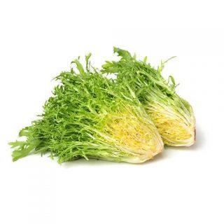 بذر کاسنی سبز